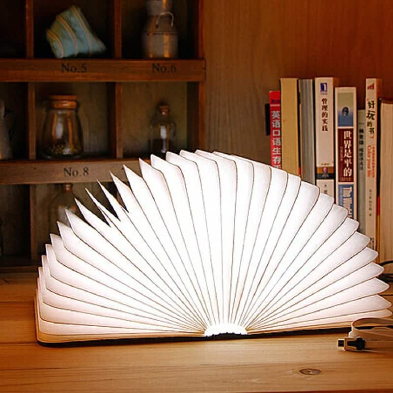 Folding Book Light