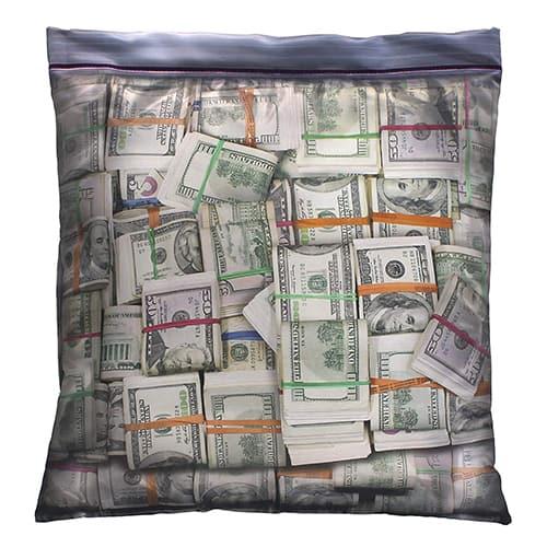 Big Cash Stash Ziplock Pillowcase