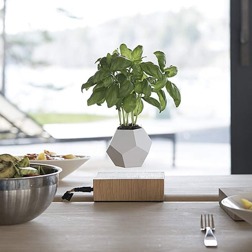 Levitating Plant Pot – Cool Bedroom Gadgets
