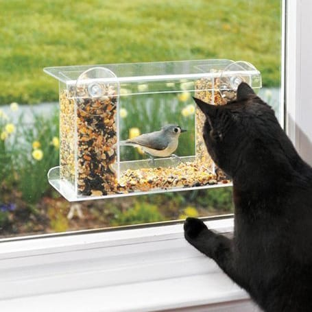 One-Way-Mirror Bird Feeder